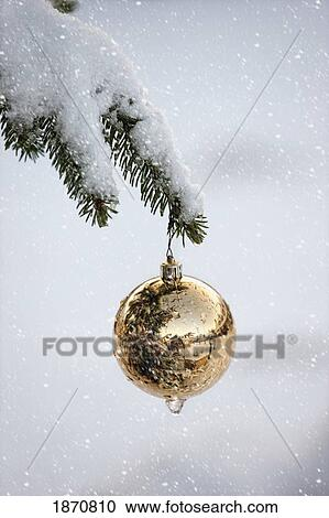 A Gold Ball Ornament Hanging From A Snow Covered Tree Branch
