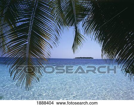 Stock Foto Ansicht Von Insel Und Palmenblatter 1888404 Suche