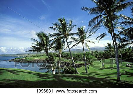 Hawaii Island Kohala Coast Mauna Kea Beach Hotel Golf Course 3rd Hole