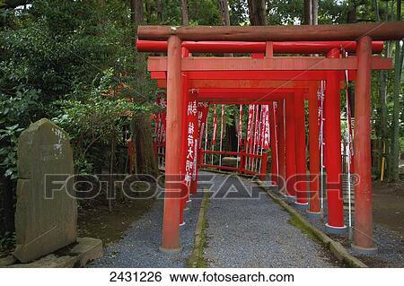 rouges, pergola, à, rd, poteaux, doublure, a, path;, japon banque de