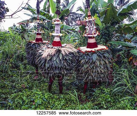 Traditional Duk Duks East New Britain Papua New Guinea