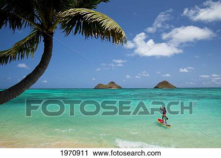 Usa Hawaii Islands Oahu Female Stand Up Paddler On Her