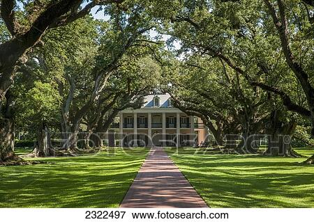 Usa, louisiane, allée chêne, plantation;, vacherie, style colonial, maison  Banque de Photo