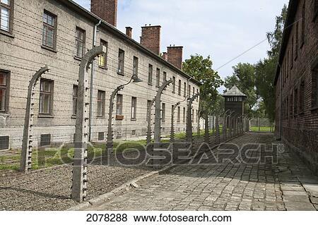 Images couloir de électrifié clôtures fil fer barbelé