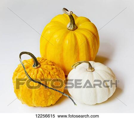 Orange Und Gelb Kürbis Und A Kürbis Auf A Weißer