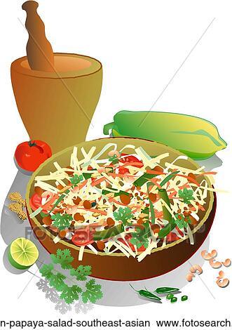 drawings of green papaya salad  southeast asian green Seafood Gumbo Clip Art Steamed Shrimp Clip Art