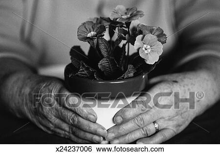 Stock Bilder - schwarz weiß, nahaufnahme, von, antikisiert, hände ...