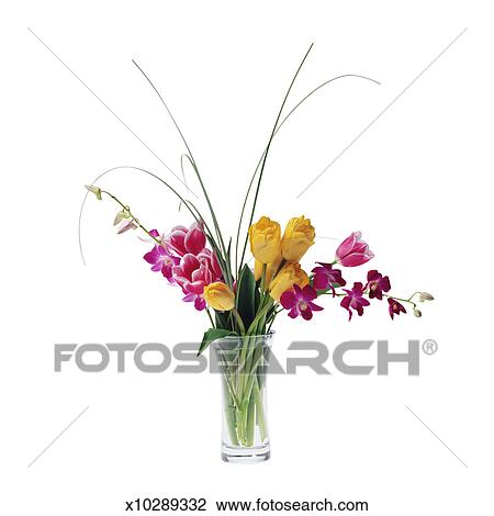 Stock Photo Of Tulips And Dendrobium Orchids In A Vase X10289332