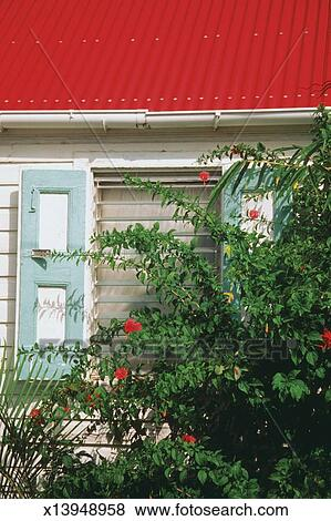 Flowers outside a house with red roof, St. Gustavia, St. Barts Stock Photo