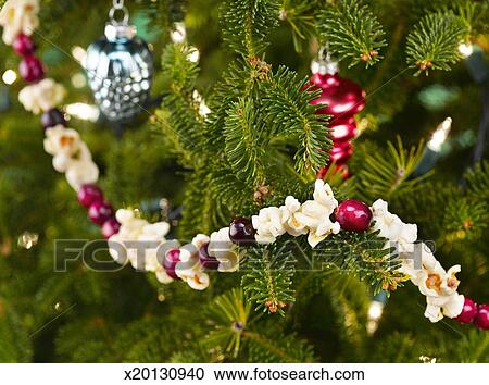 close up of christmas tree with popcorn cranberry garland