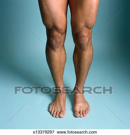 Picture of Man\'s Muscular Legs x13379297 - Search Stock Photography ...