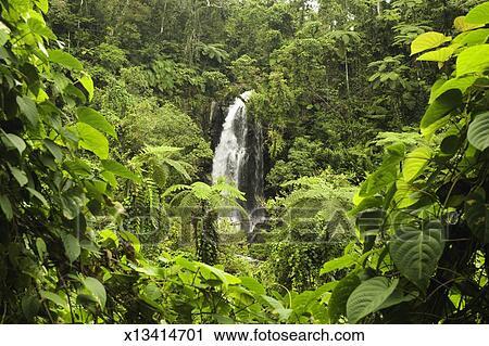 Fiji Taveuni Island Bouma Falls Stock Image X13414701