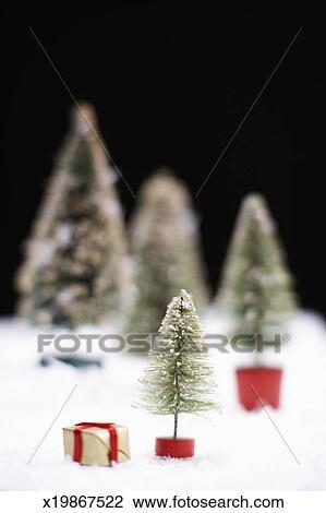 small christmas trees on fake snow