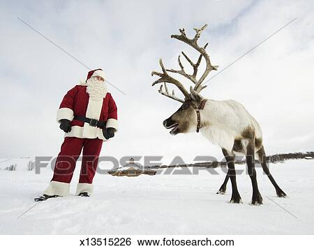 stock images of santa claus standing with his reindeer x13515226