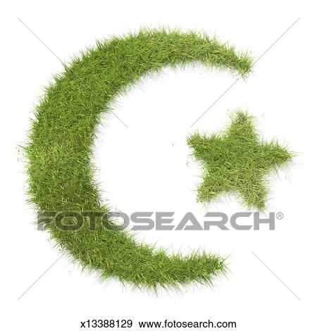Stock Photograph Of Islam Symbol Made Of Grass X13388129 Search