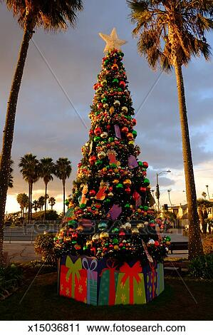 Stock Photography Of Decorated Christmas Tree And Palm Trees