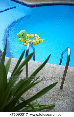Inflatable plastic turtle in swimming pool Stock Photo