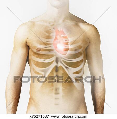 Foto - hombre, con, corazón, y, costillas, imagen, encima, pecho ...