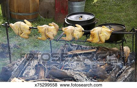 pictures of chicken roasting over campfire x75299558 search stock