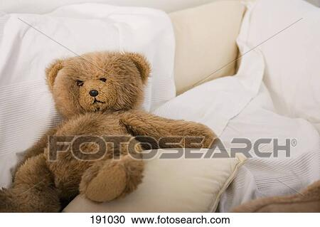 Teddy Bear On Sofa Stock Image 191030