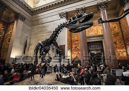 Museo Storia Naturale New York.Skeleton Di Un Allosaurus Theodore Roosevelt Rotonda Americano