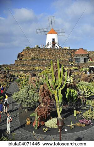 Stock Image Of Windmill At The Jardin De Cactus By Cesar Manrique