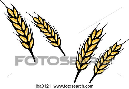 clipart of bunch of wheat jba0121 search clip art illustration rh fotosearch com wheat clip art free wheat clip art free