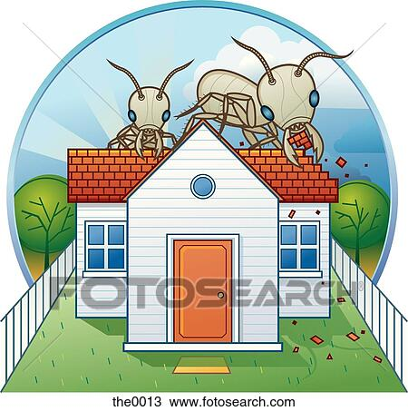 Termite Stock Illustrations And Cartoons | Getty Images |Termites Eating House