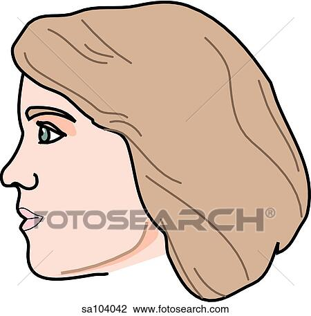 Clip Art of Lateral view of the external anatomy of a female person ...