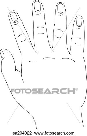 Clip art of outline of dorsal view hand sa204022 search clipart clip art outline of dorsal view hand fotosearch search clipart illustration voltagebd Image collections