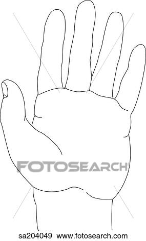 Stock illustration of outline of palmar view of the hand sa204049 outline of palmar view of the hand voltagebd Image collections