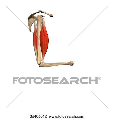 Clipart - vue latérale 7dc80317320