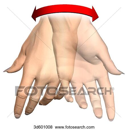 Stock Illustration of hand showing supination and pronation ...