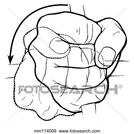 Stock Illustration of Forearm supination mm114009 - Search Vector ...