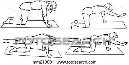 Clipart Of Exercise Bird Dog Mm210001 Search Clip Art