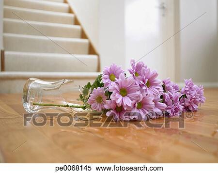 Stock Image Of Broken Vase Of Flowers On Floor Pe0068145 Search