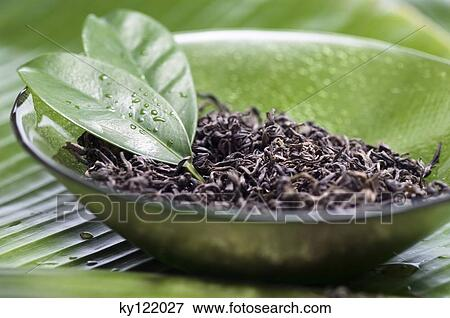 Dried Green Tea Leaves Close Up Stock Photo Ky122027 Fotosearch