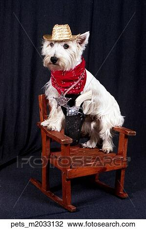 Fine A Terrier Dog Sitting On A Rocking Chair Wearing A Cowboy Squirreltailoven Fun Painted Chair Ideas Images Squirreltailovenorg