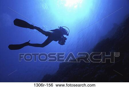 stock images of silhouette sports water sports scuba underwater