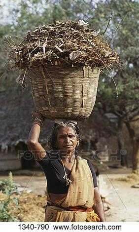 Stock photography of mature woman carrying organic manure for Mural fish in tamil