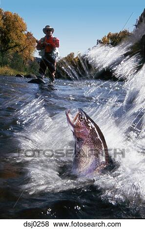 Pictures Of Man Fly Fishing In A Shallow River With A