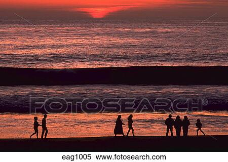 Paar Zu Fuß Am Strand Bei Sonnenuntergang Stock Vektor Art und mehr Bilder  von Aktiver Lebensstil - iStock