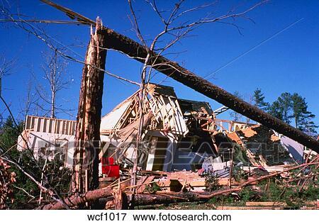 image destruction depuis tornade arbres tomb s d moli maisons raleigh caroline nord. Black Bedroom Furniture Sets. Home Design Ideas