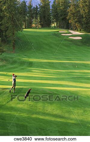 Golf Wall Murals Canada Golf Wall Murals Wallpaper Murals Wallsauce