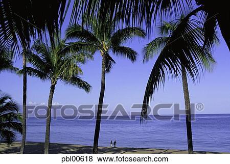 Kaanapali Beach Kaanapali Maui Hawaii Usa Stock Photo