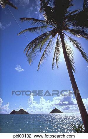 Lanikai Beach Kailua Oahu Hawaii Usa Stock Image