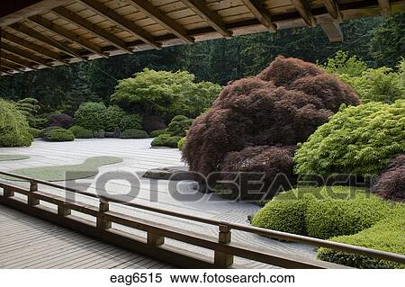Raked Sand And Manicured Trees Plants At The Portland Japanese