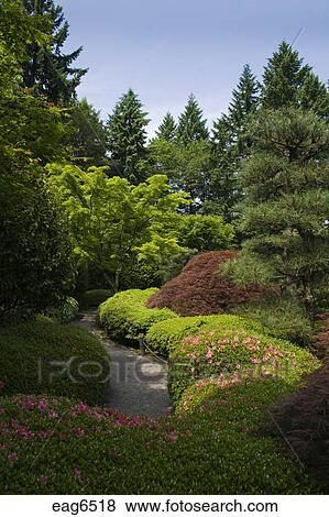 Walkway Through The Manicured Trees Plants At The Portland