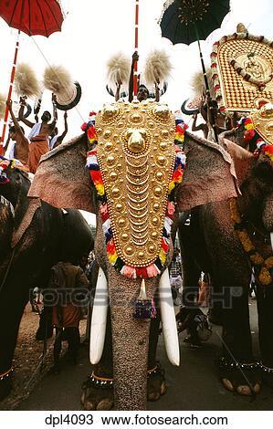 MAA-61064: Trichurpooram pooram; elephant march festival ...