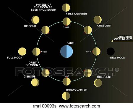 Stock Illustration Of A Diagram Showing The Phases Of The Earths